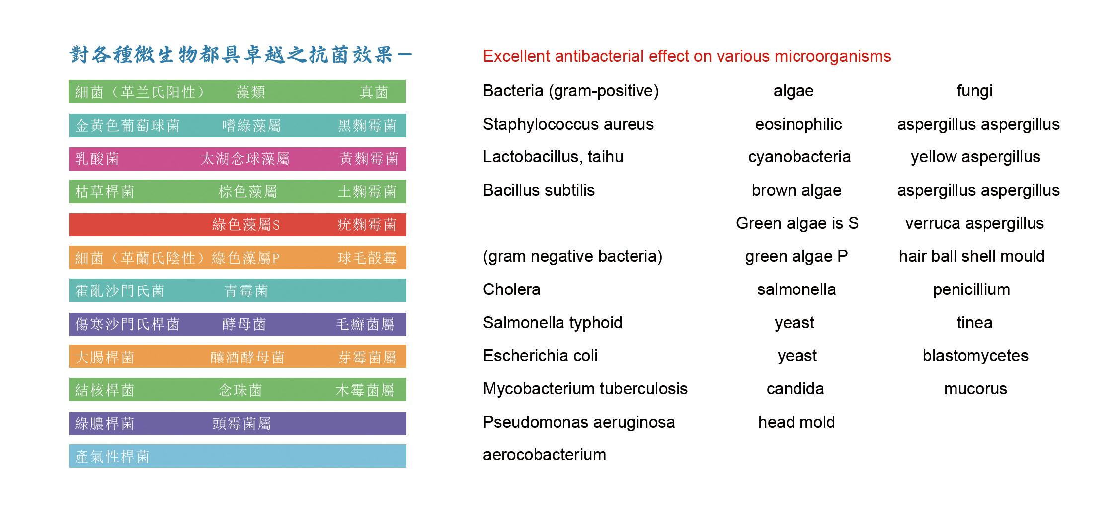 抗菌、防霉检测菌种